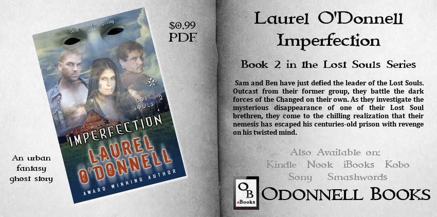 Lost Souls Imperfection by Laurel O'Donnell PDF